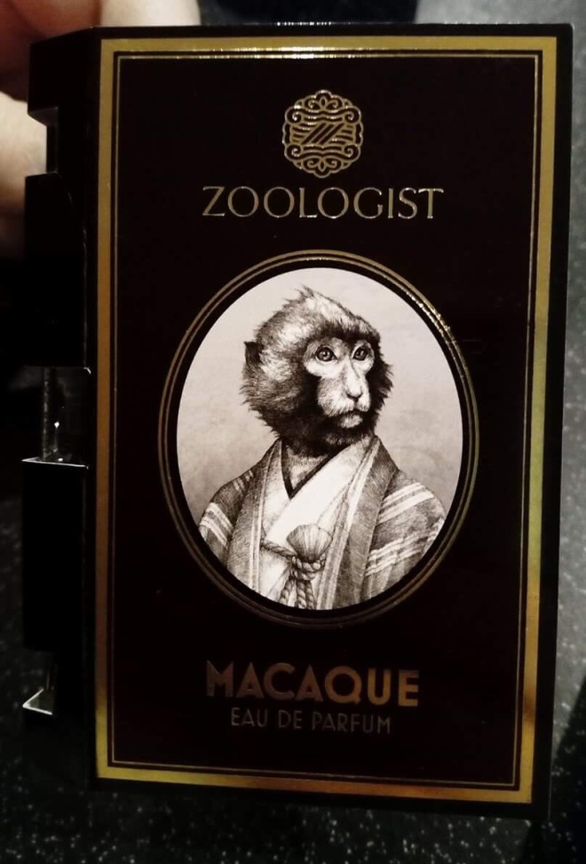 Zoologist - Macaque | BonjourPerfume