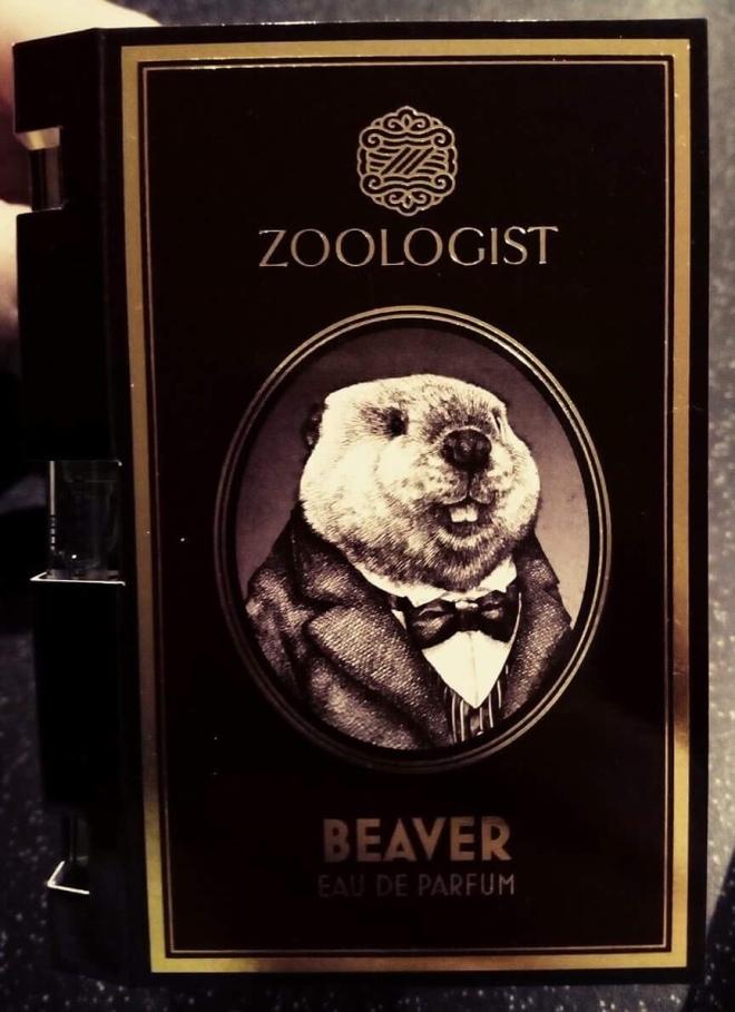 Zoologist - Beaver | BonjourPerfume