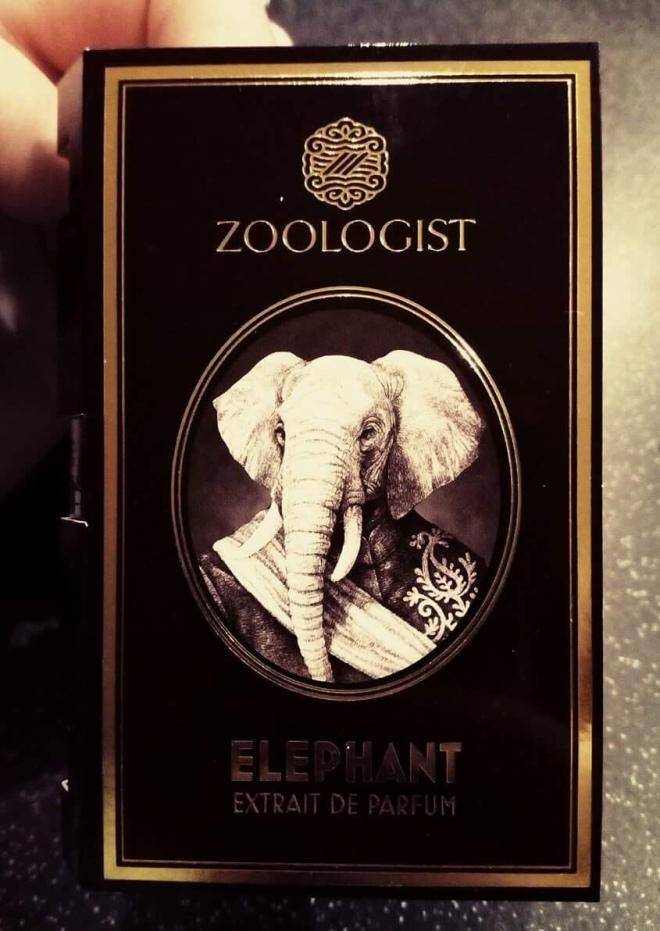 Zoologist - Elephant | BonjourPerfume